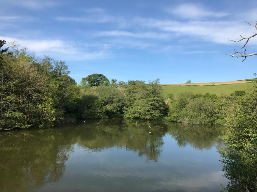 3 Water's Edge
