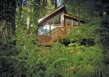 Forest Of Dean Lodges