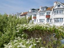 Apartment Near Bexhill On Sea