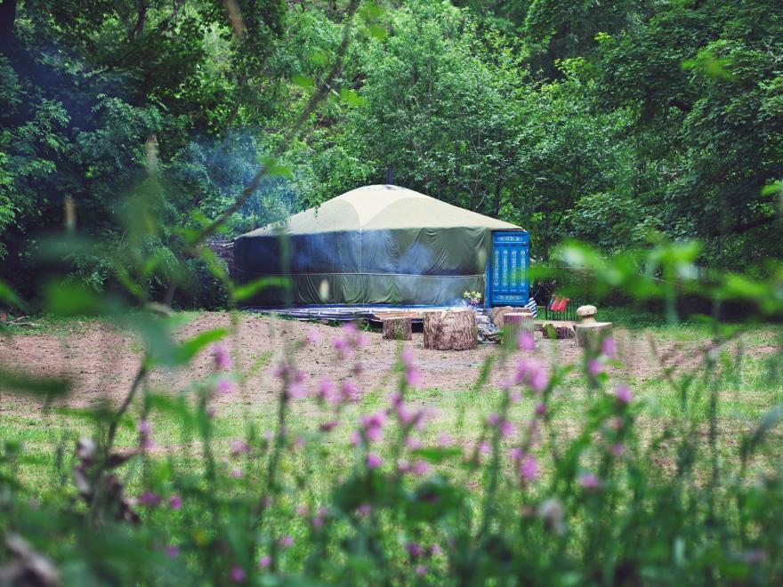 Log Cabin near Brecon (1ml SE)