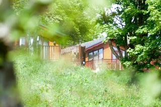 Cabins & Safari Tents at Sandy Glade Holiday Park