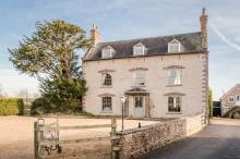 The Bell And Flamingo
