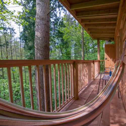 Treetop Cabin - Redwood Valley