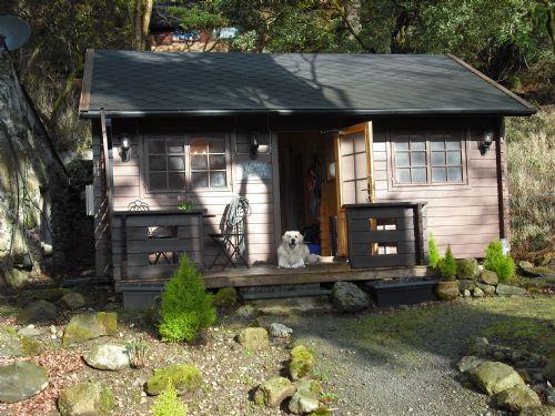 Maple Log Cabin
